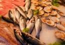 Když ryby, tak čerstvé!